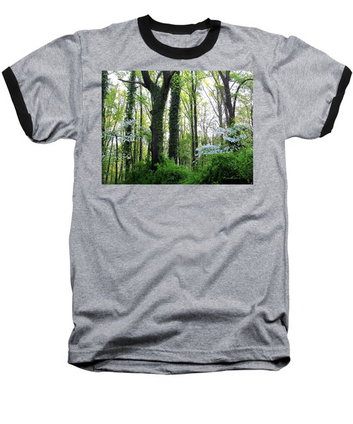 Chesapeake Oldgrowth Forest Baseball T-Shirt
