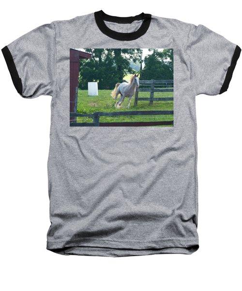 Chester On The Run Baseball T-Shirt by Donald C Morgan