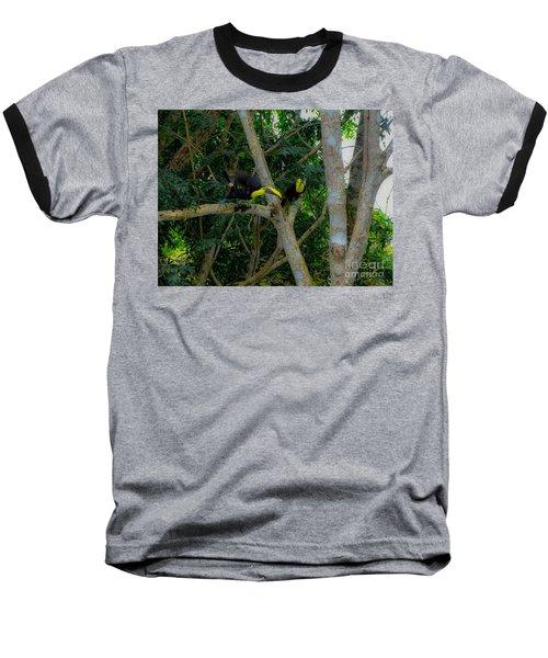 Chestnut-mandibled Toucans Baseball T-Shirt