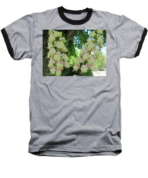Chestnut Tree Flowers Baseball T-Shirt