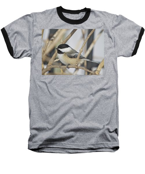 Chickadee-5 Baseball T-Shirt