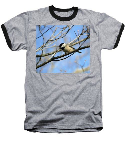 Baseball T-Shirt featuring the photograph Chickadee by Cathy Harper