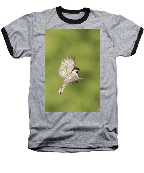 Chickadee In Flight Baseball T-Shirt by Alan Lenk