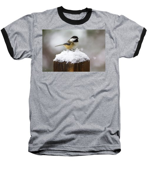 Chickadee In The Snow Baseball T-Shirt