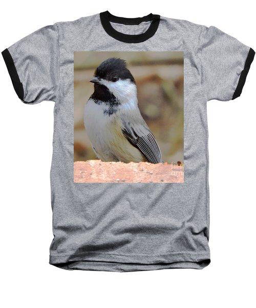 Chickadee's Winter Reverie Baseball T-Shirt