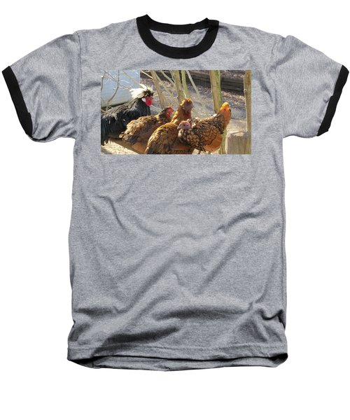 Baseball T-Shirt featuring the photograph Chicken Protest by Jeanette Oberholtzer