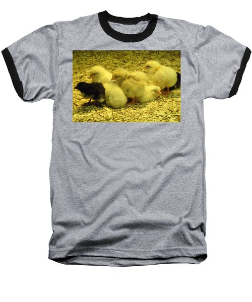 Baseball T-Shirt featuring the photograph Chicks by Laurel Best