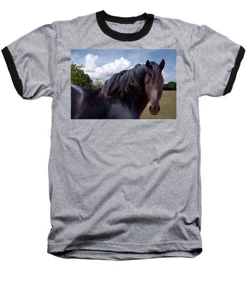 Chief - Windy Portrait Series 3 - Digitalart Baseball T-Shirt