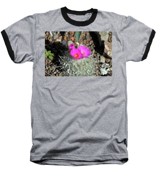 Chihuahua Snowball 2 Baseball T-Shirt