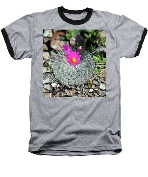 Chihuahua Snowball 3 Baseball T-Shirt