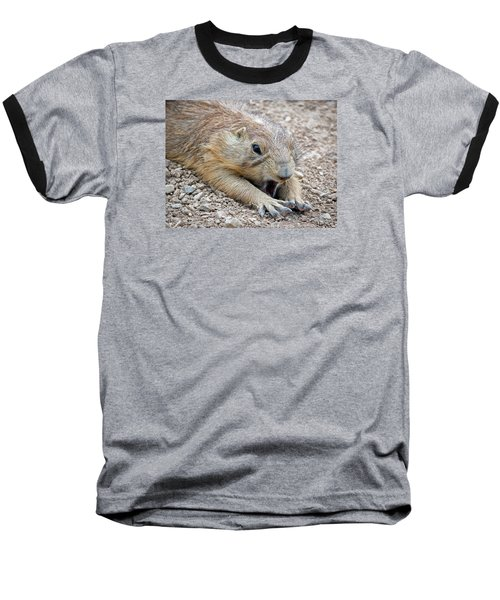 Chillin' Prairie Dog Baseball T-Shirt by Elaine Malott