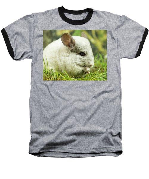Chinchilla Baseball T-Shirt