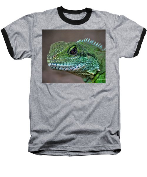 Chinese Water Dragon Baseball T-Shirt by Savannah Gibbs