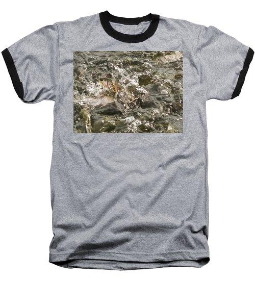 Chinook Salmon  Baseball T-Shirt