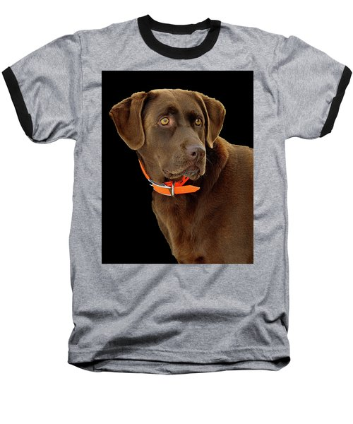 Chocolate Lab Baseball T-Shirt
