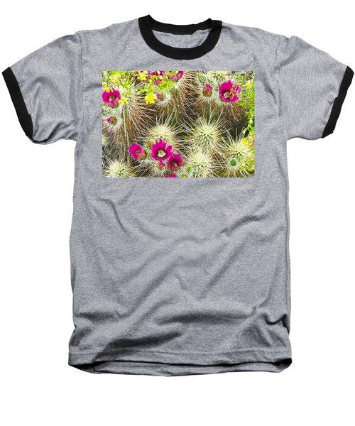 Cholla Cactus Blooms Baseball T-Shirt