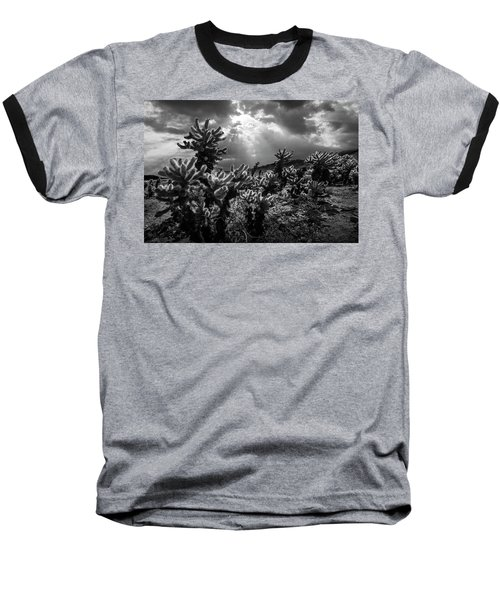 Baseball T-Shirt featuring the photograph Cholla Cactus Garden Bathed In Sunlight In Black And White by Randall Nyhof
