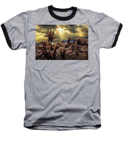 Baseball T-Shirt featuring the photograph Cholla Cactus Garden Bathed In Sunlight In Joshua Tree National Park by Randall Nyhof