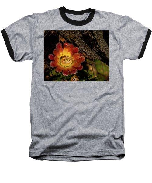Cholla Baseball T-Shirt