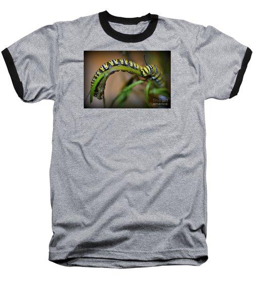 Chomp, Chomp Baseball T-Shirt by Lew Davis