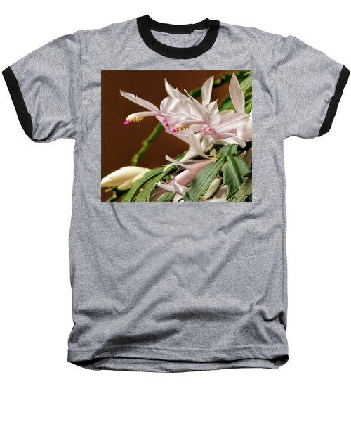 Christmas Cactus Baseball T-Shirt