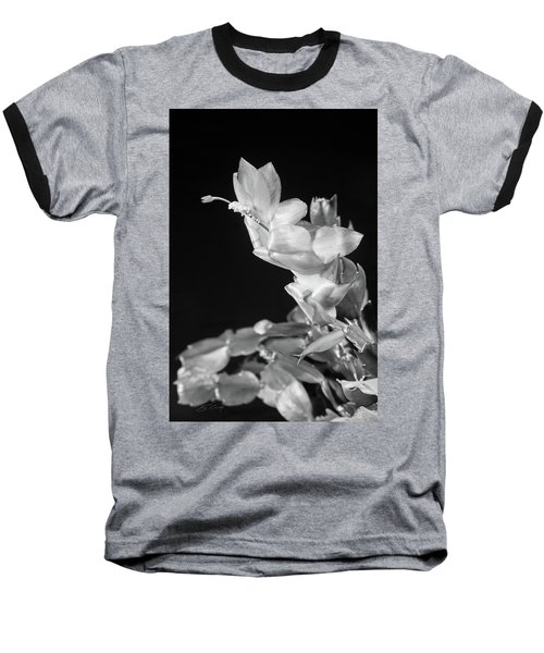 Baseball T-Shirt featuring the photograph Christmas Cactus On Black by Ed Cilley
