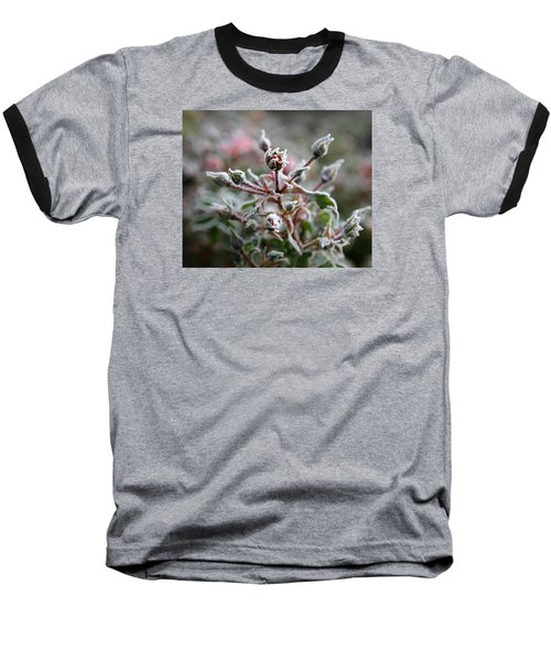 Christmas Miniature Rosebuds Baseball T-Shirt