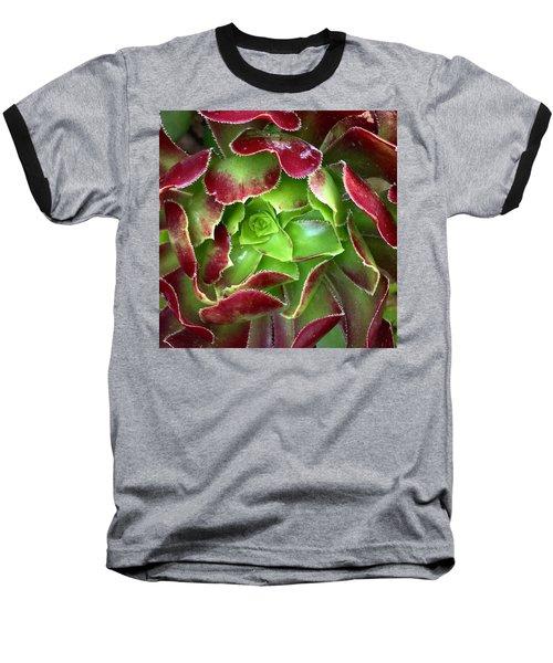 Christmas Succulent Baseball T-Shirt