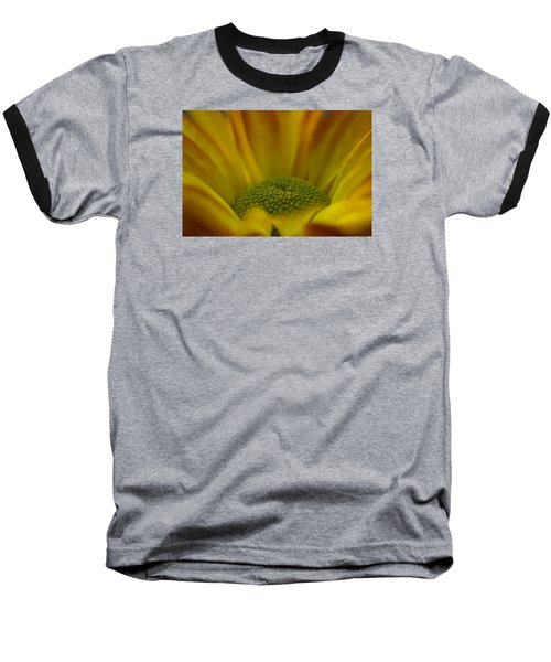 Chrysanthemum Baseball T-Shirt