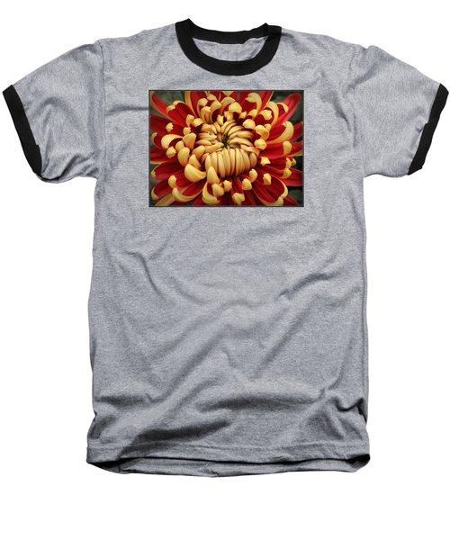 Chrysanthemum In Full Bloom Baseball T-Shirt