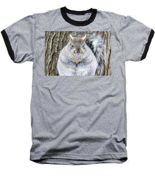 Chubby Squirrel Baseball T-Shirt by Brook Burling