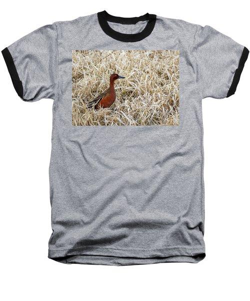 Cinnamon Teal Baseball T-Shirt