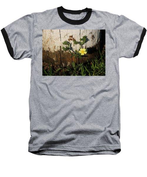 Cinquefoil Wildflower Baseball T-Shirt