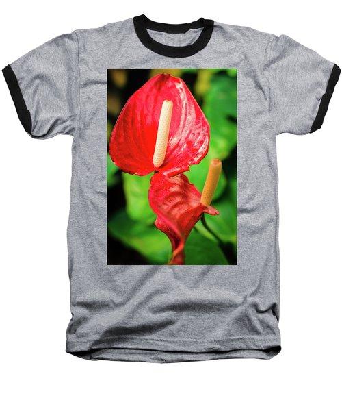 City Garden Flowers Baseball T-Shirt