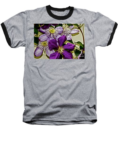 Purple Clematis Flower Vines Baseball T-Shirt by Carol F Austin