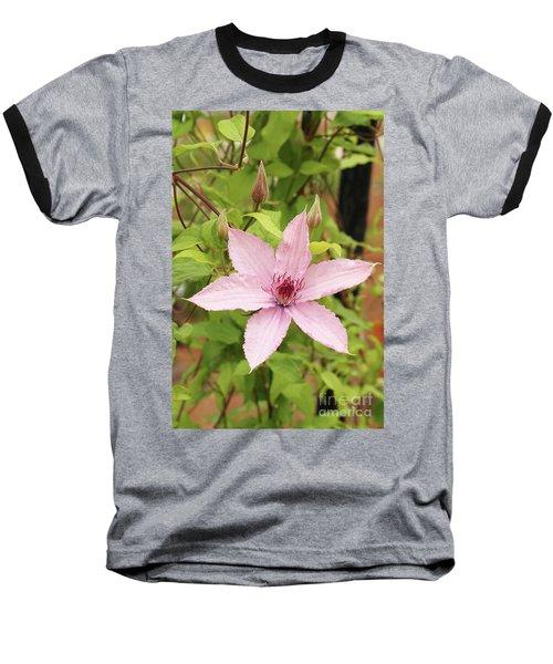 Clematis Hagley Hybrid #2 Baseball T-Shirt