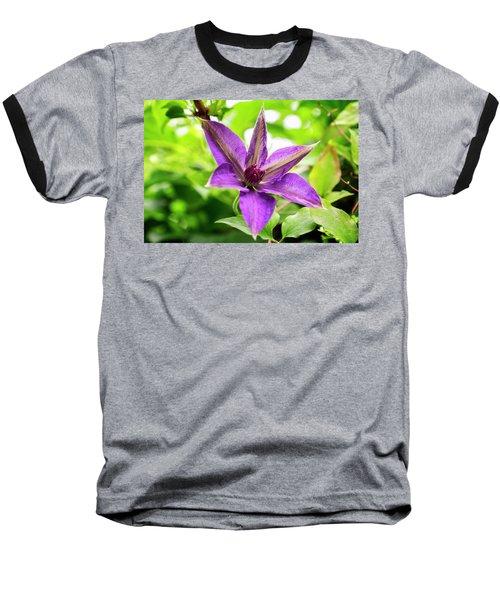 Clematis Vine II Baseball T-Shirt