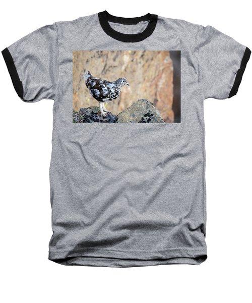 Cliffside Ptarmigan Baseball T-Shirt