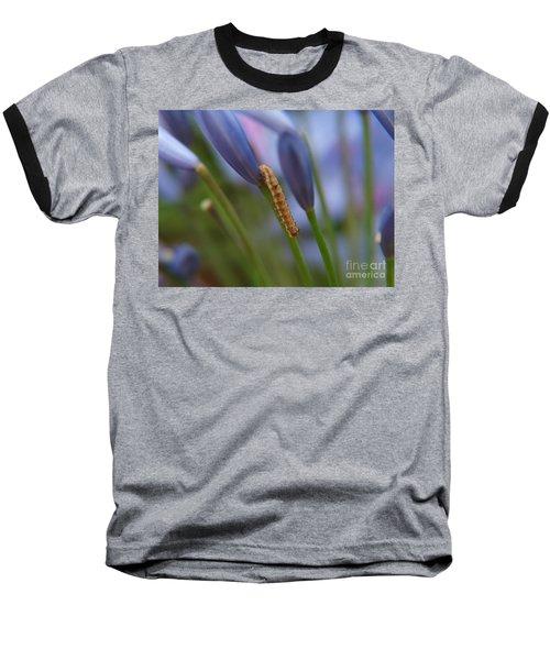 Climbing Caterpillar Baseball T-Shirt by Trena Mara