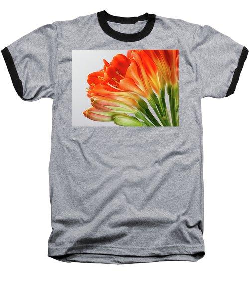 Clivia Miniata 2 Baseball T-Shirt