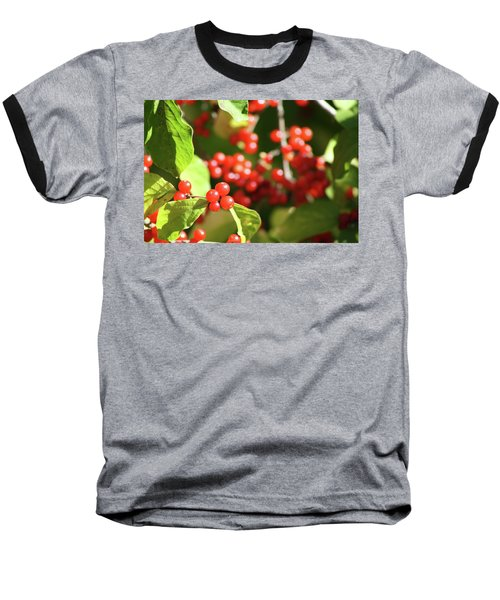 Close Up Of Red Berries Baseball T-Shirt by Michele Wilson