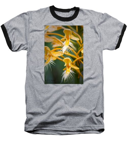 Close-up Of Yellow Fringed Orchid Baseball T-Shirt