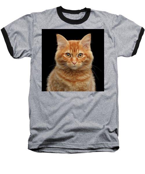 Close-up Portrait Of Ginger Kitty On Black Baseball T-Shirt