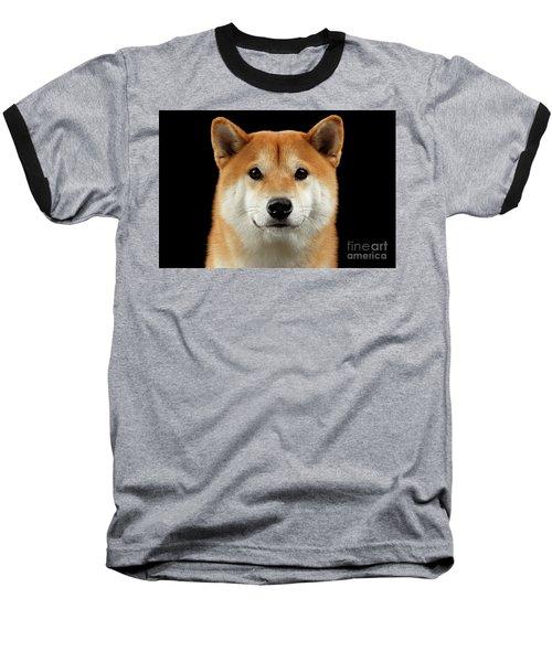 Close-up Portrait Of Head Shiba Inu Dog, Isolated Black Background Baseball T-Shirt