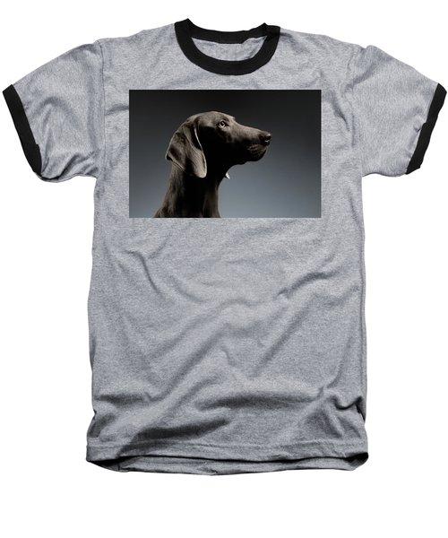 Close-up Portrait Weimaraner Dog In Profile View On White Gradient Baseball T-Shirt