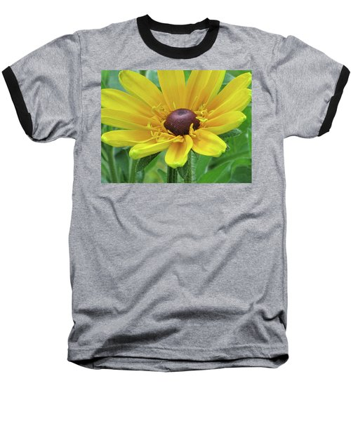 Close Up Summer Daisy Baseball T-Shirt