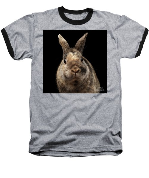 Closeup Funny Little Rabbit, Brown Fur, Isolated On Black Backgr Baseball T-Shirt