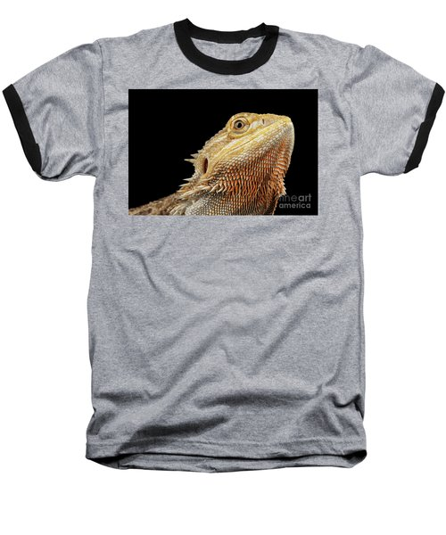 Closeup Head Of Bearded Dragon Llizard, Agama, Isolated Black Background Baseball T-Shirt