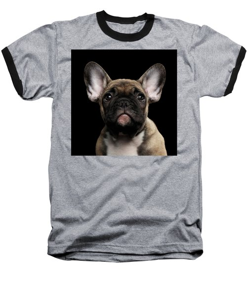 Closeup Portrait French Bulldog Puppy, Cute Looking In Camera Baseball T-Shirt