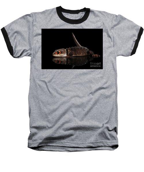 Closeup Red-eyed Crocodile Skink, Tribolonotus Gracilis, Isolated On Black Background Baseball T-Shirt